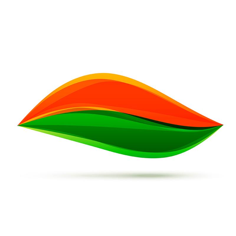 Indian Flag png